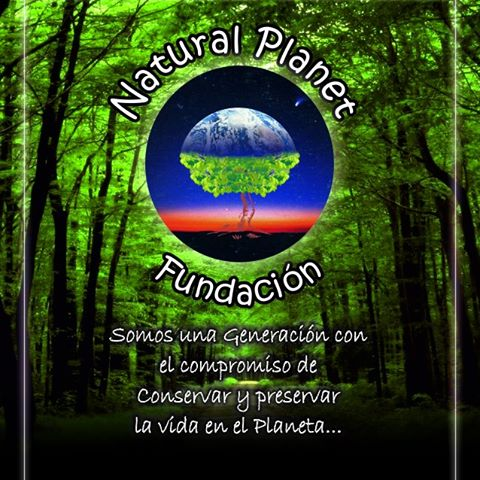 Logo Natural Planet Foundation