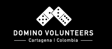 Logo Domino Volunteers